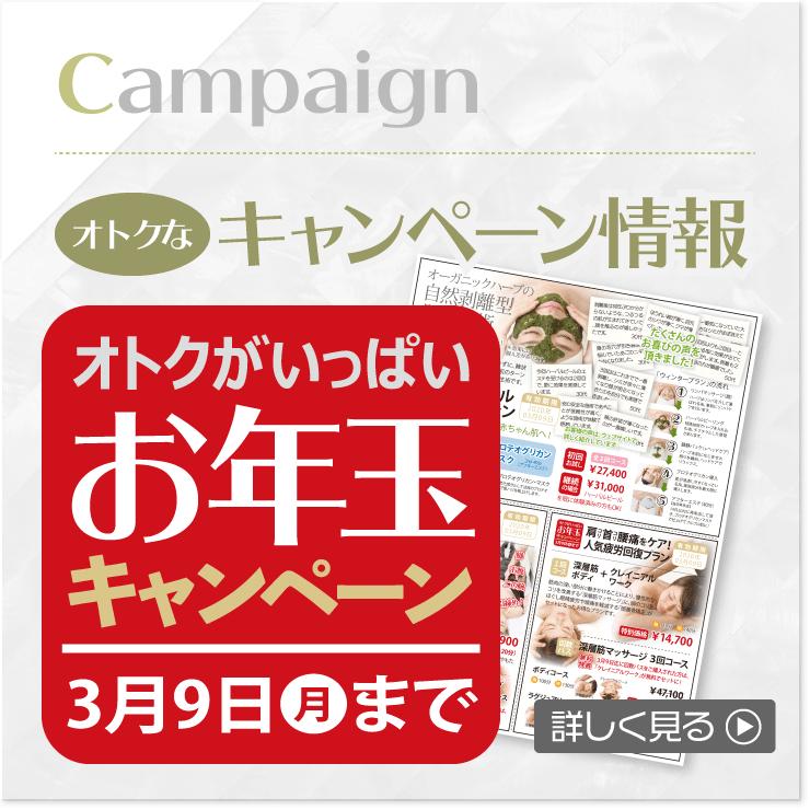 お年玉キャンペーン:2020年1月4日~2020年3月9日
